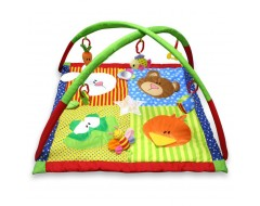 Lucky Baby 4 Animal Color Playgym
