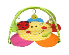 Lucky Baby Smiley Flower with Ladybug Pillow Playgym