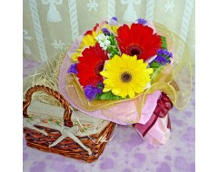 6 Mixed Color Gerberas Hand Bouquet with Organza Wrapping